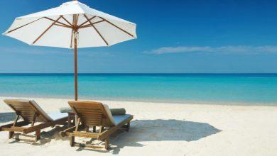 Discover Siesta Key & Siesta Key Beach in Sarasota, Florida: Best of Siesta Key, FL